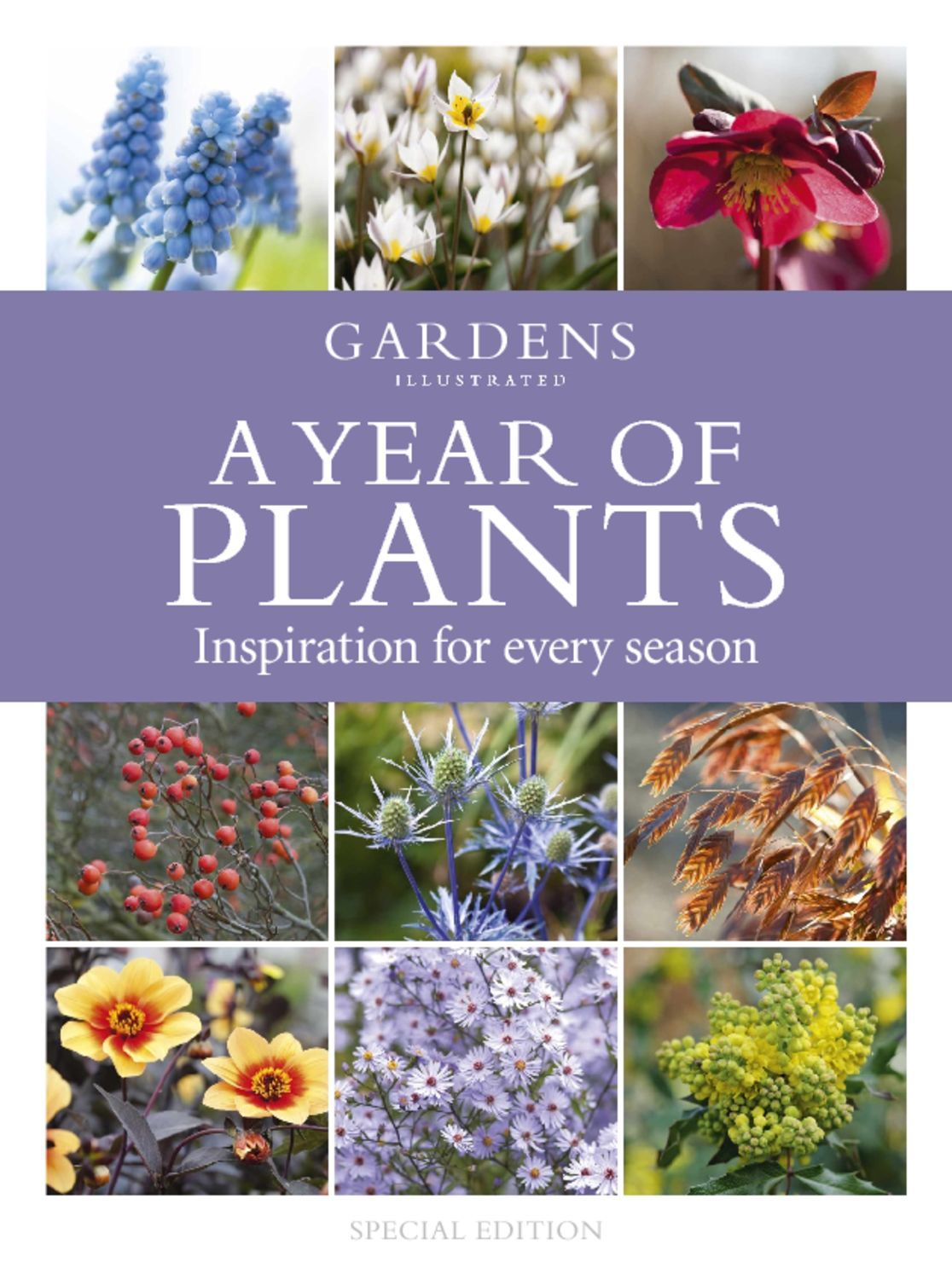A Year of Plants from the makers of Gardens Illustrated Digital