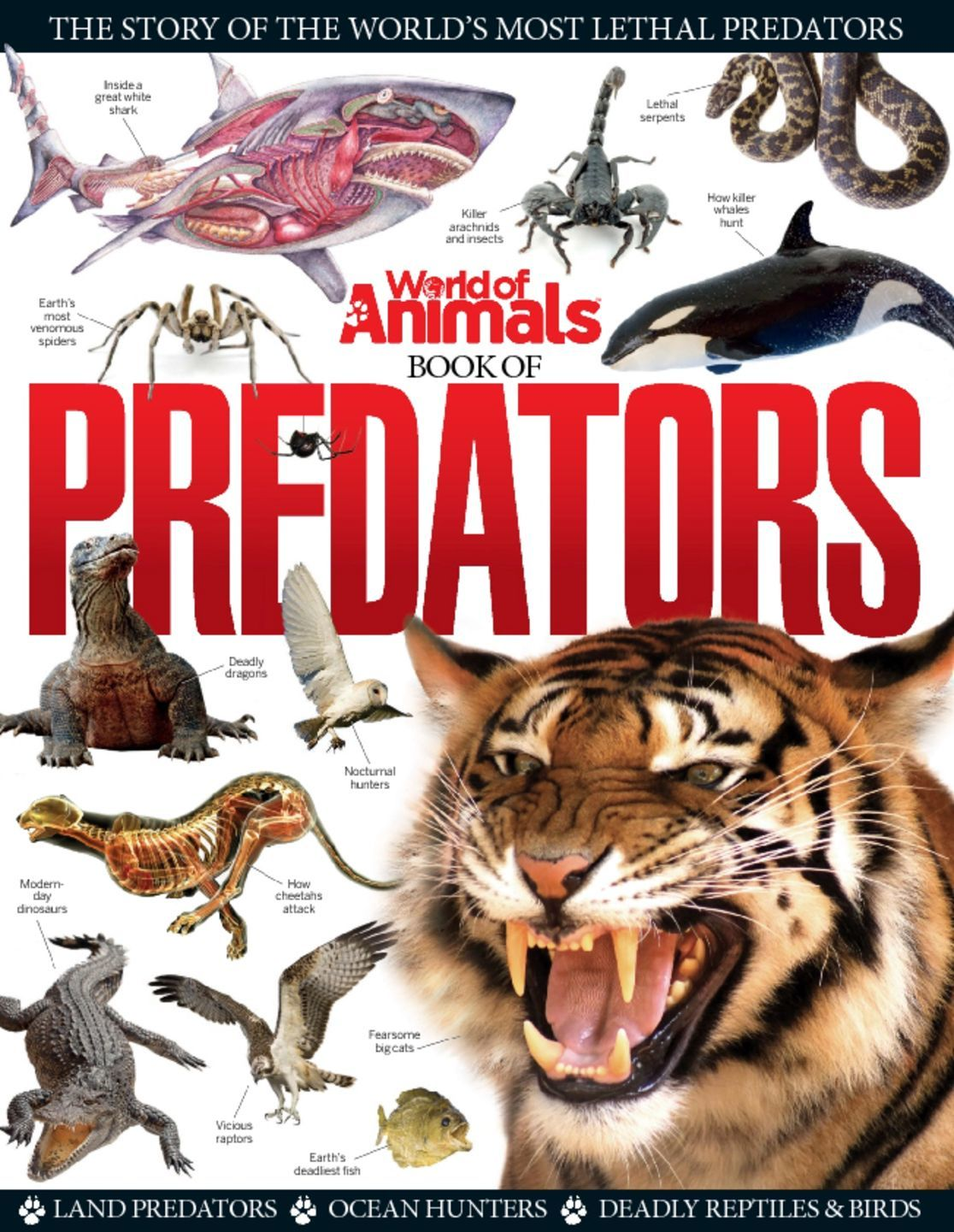 World of Animals Book of Predators (Digital)