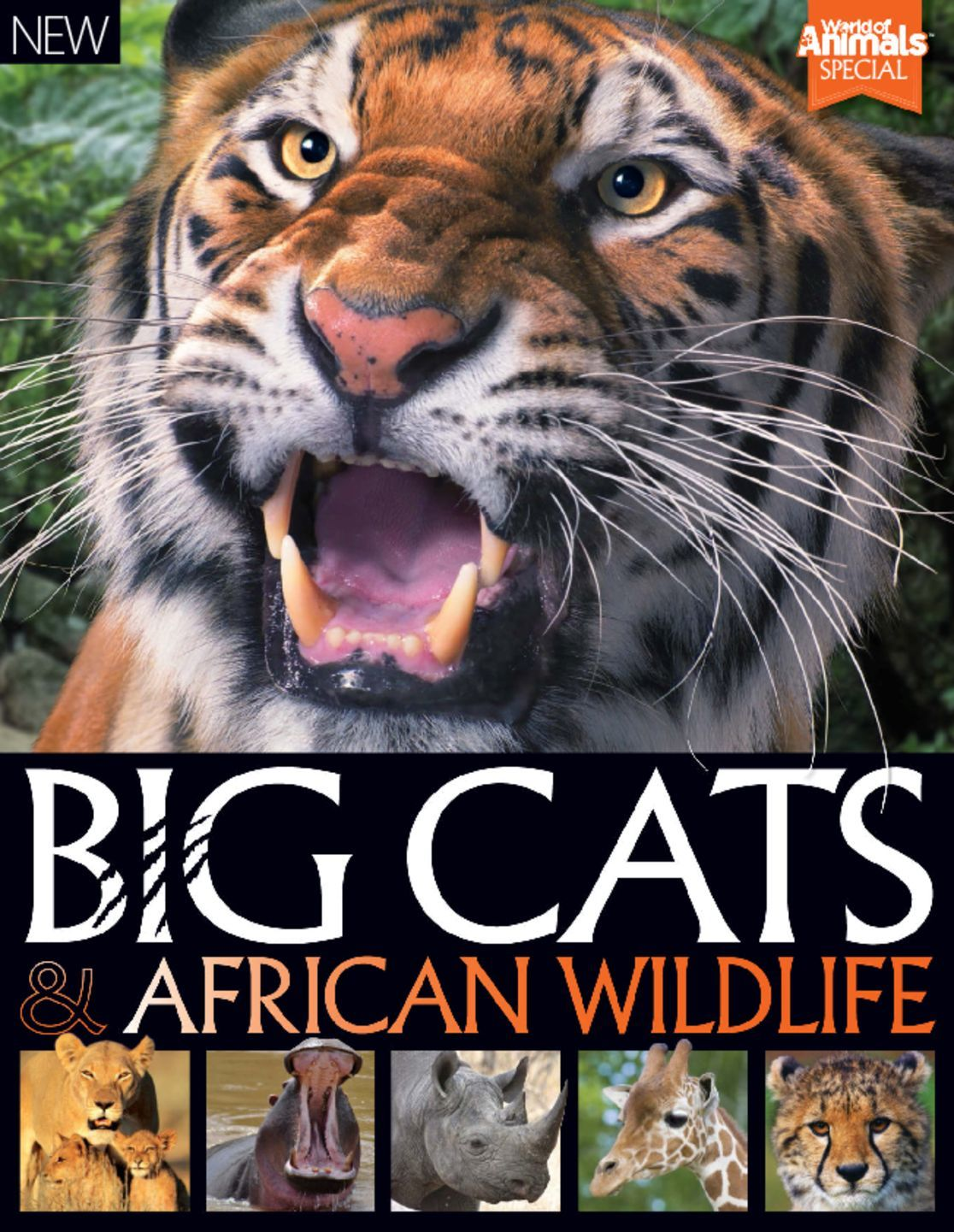 World of Animals Book of Big Cats and African Wildlife (Digital)