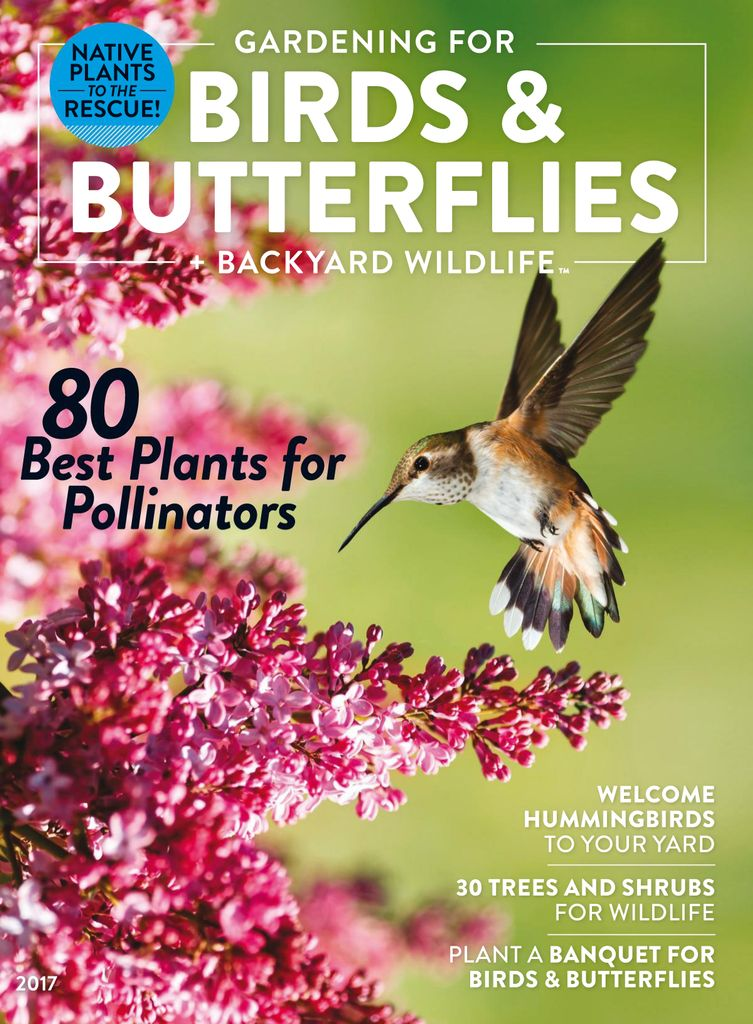wildlife gardening magazines