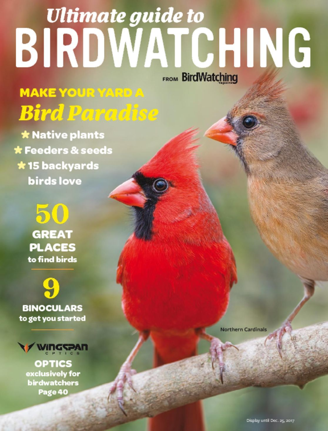 Ultimate Guide to Birdwatching Digital