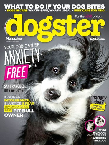 Best Price for Dog Fancy Magazine Subscription