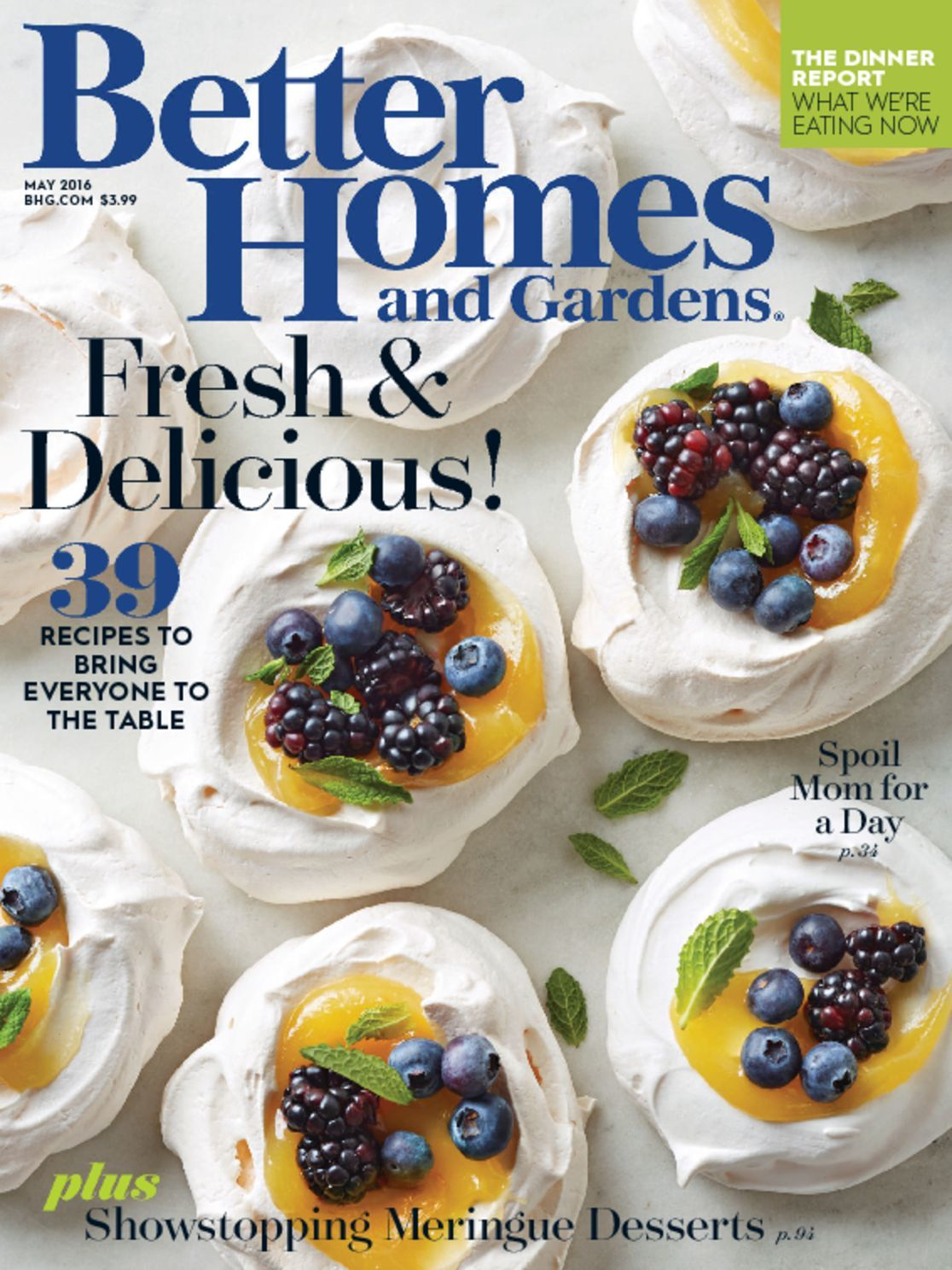Better homes gardens magazine for Better homes and gardens media kit
