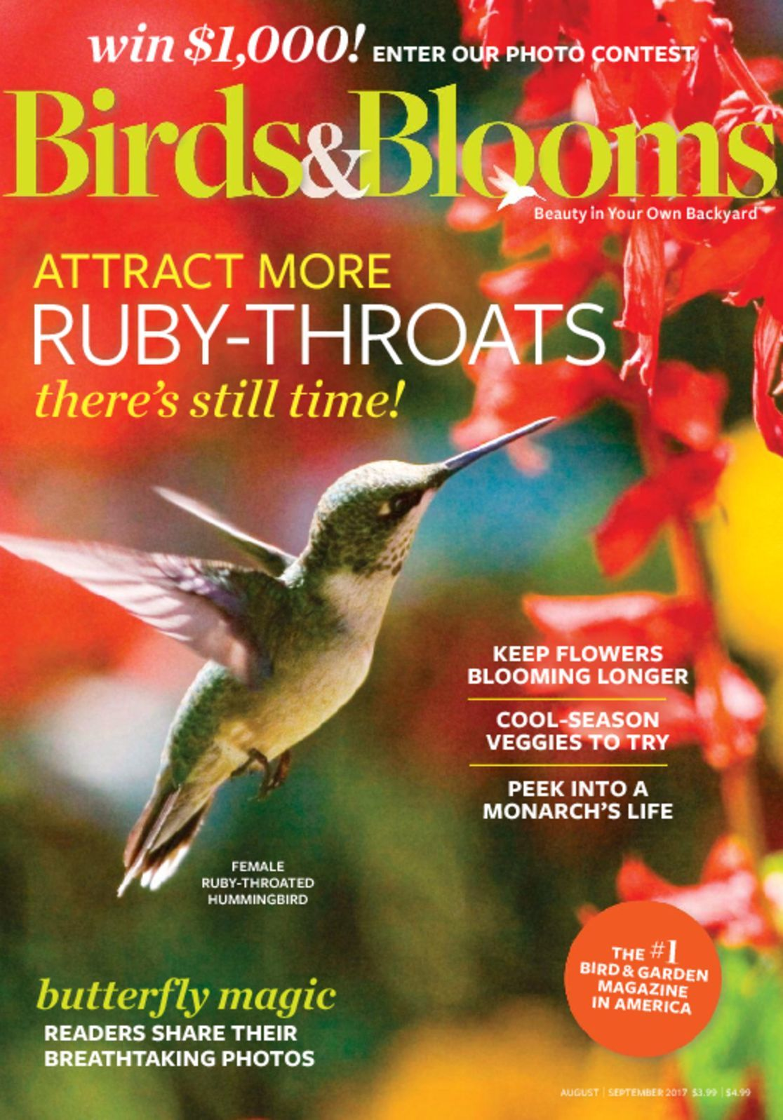Birds Blooms Magazine Subscription