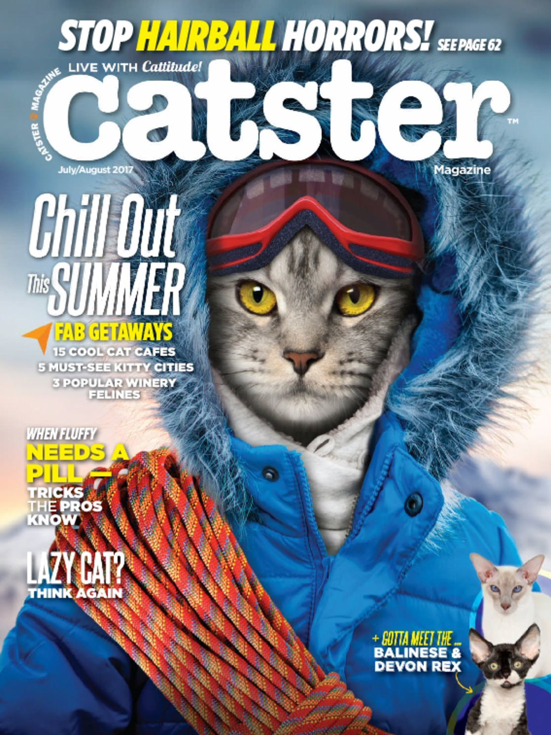 6ffe1a101f Catster Magazine