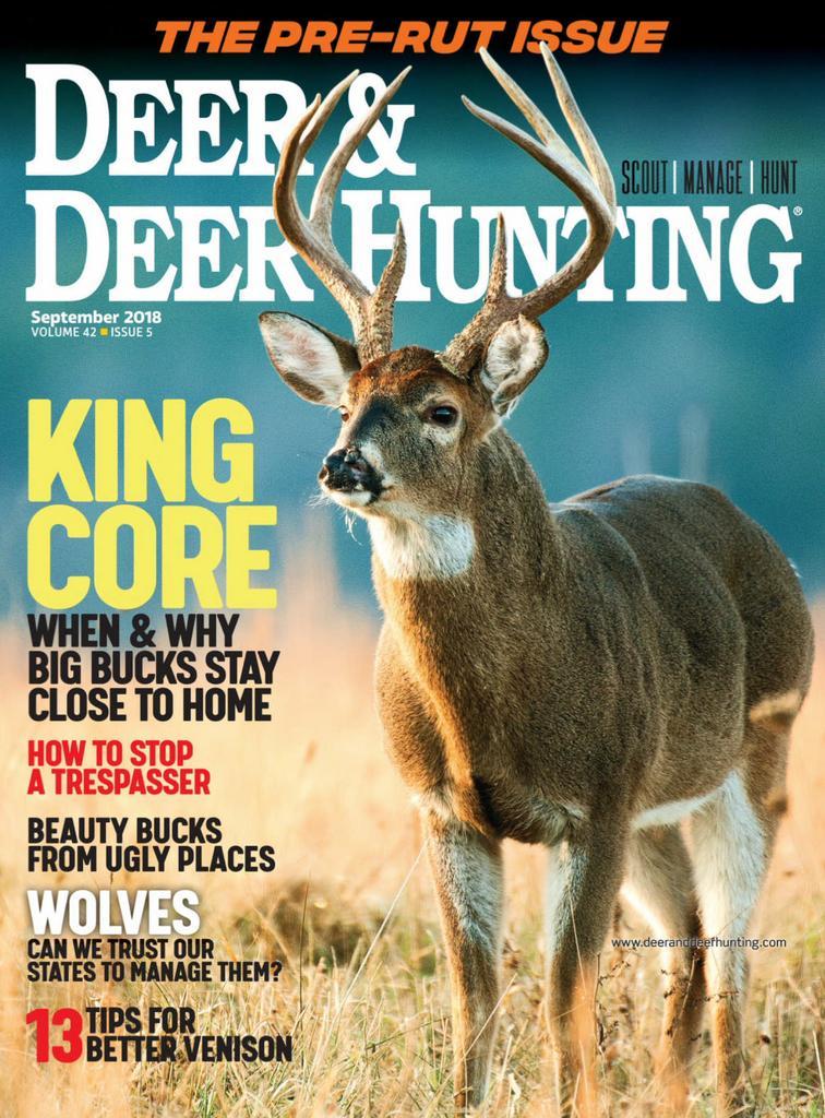 Deer Deer Hunting