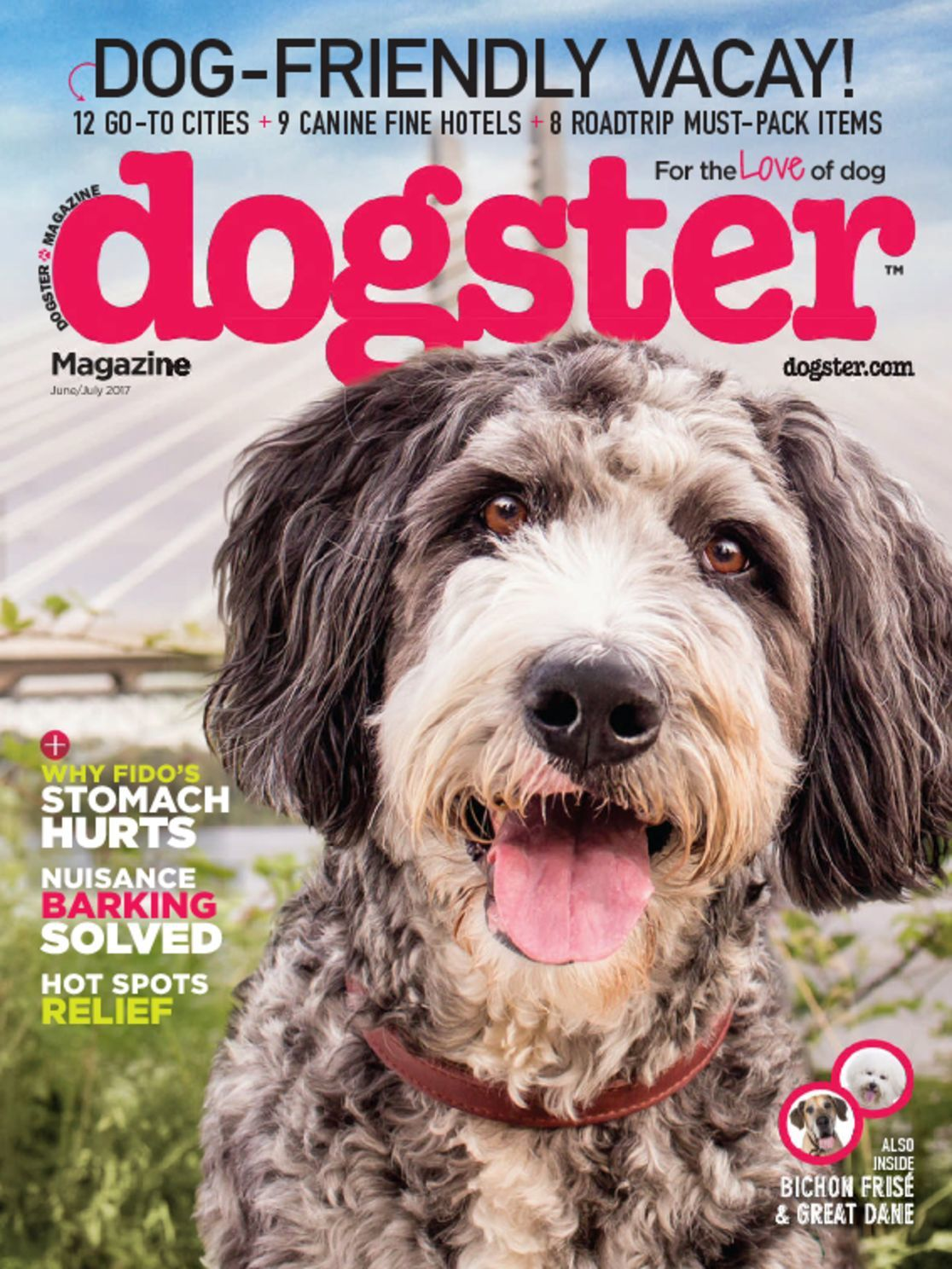 Dogster Magazine Subscription
