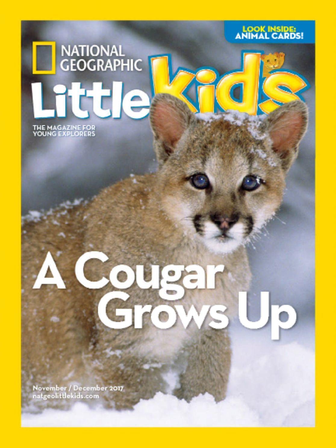 Innovative Auto Finance >> National Geographic Little Kids Magazine - DiscountMags.com
