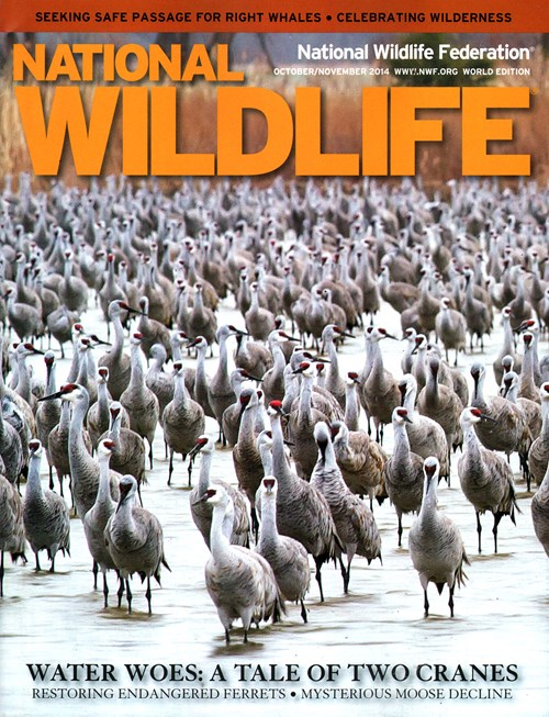 National Wildlife Magazine Subscription