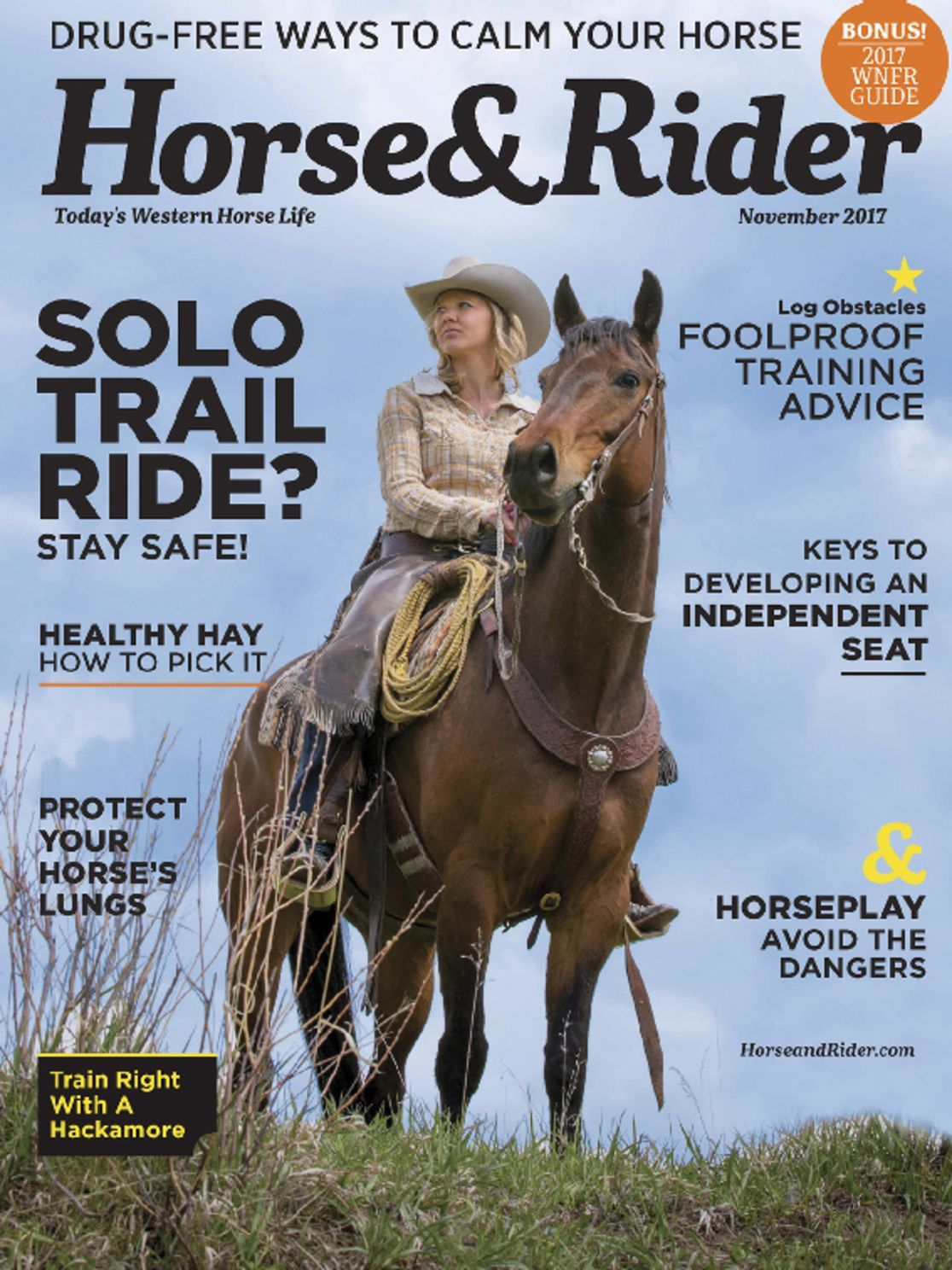 Horse Rider Magazine Subscription