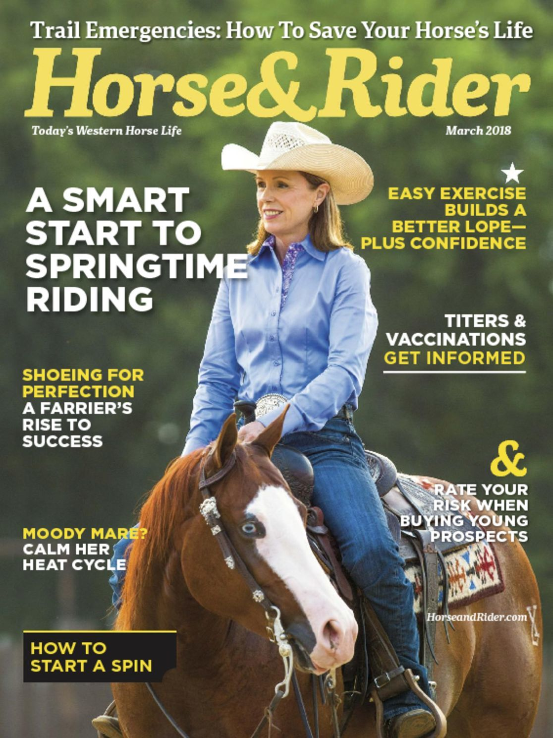 Horse Rider Magazine Subscription