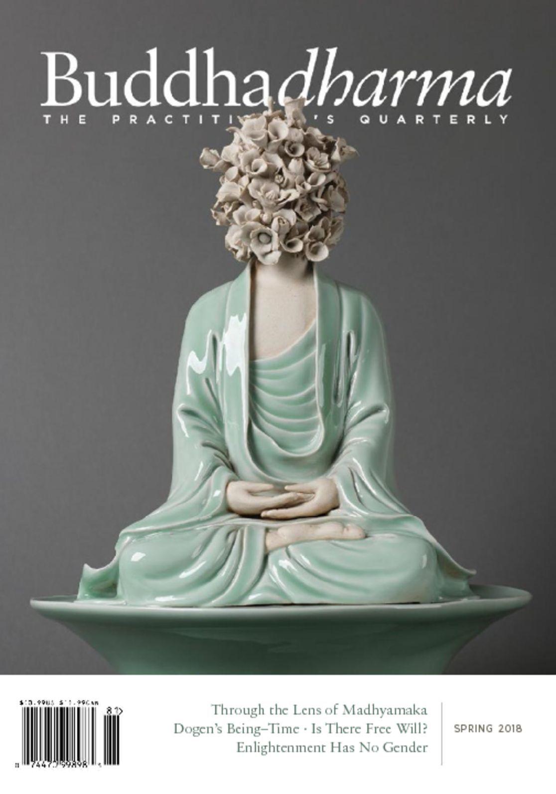 Buddhadharma The Practitioners Quarterly Digital