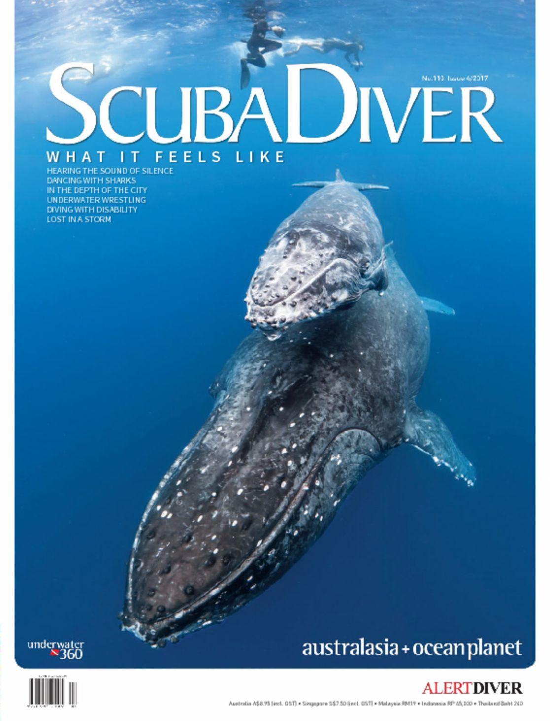 Scuba Diver Digital
