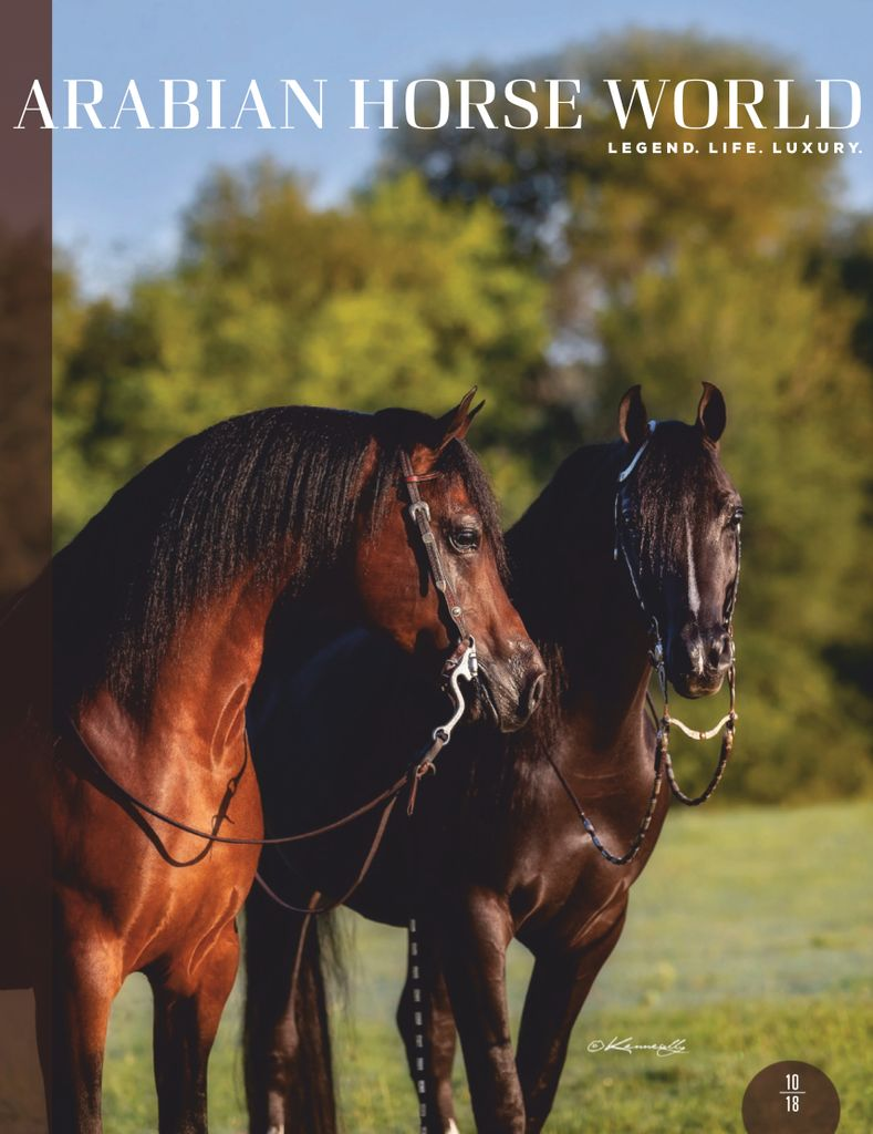 Arabian Horse World Digital