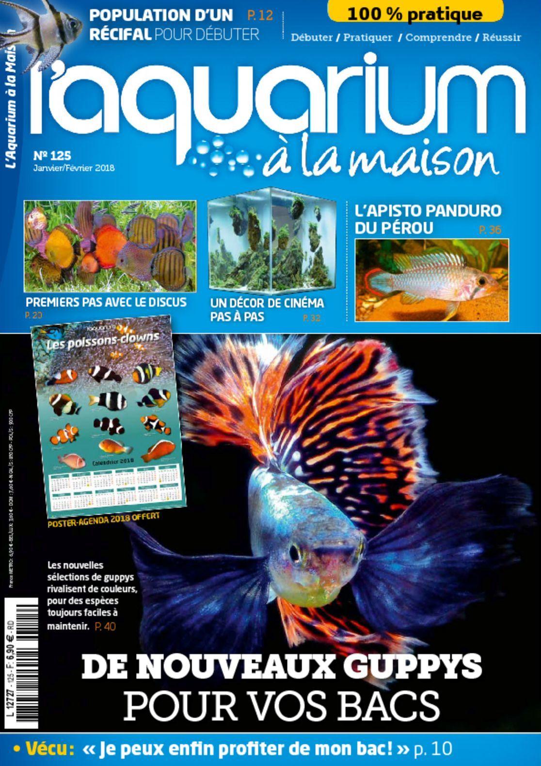 L aquarium a la maison blitz blog for Aquarium a la maison