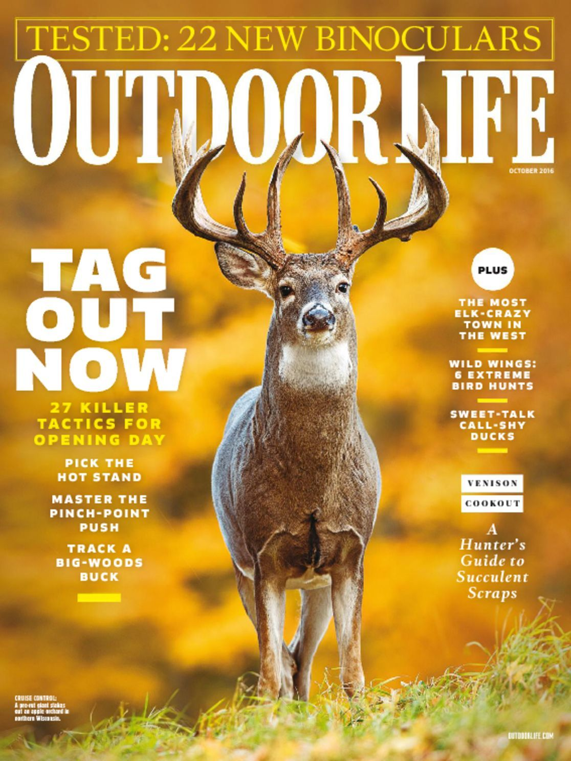 Outdoor Life Magazine   Get Your Subscription ... on Life Outdoor id=69356