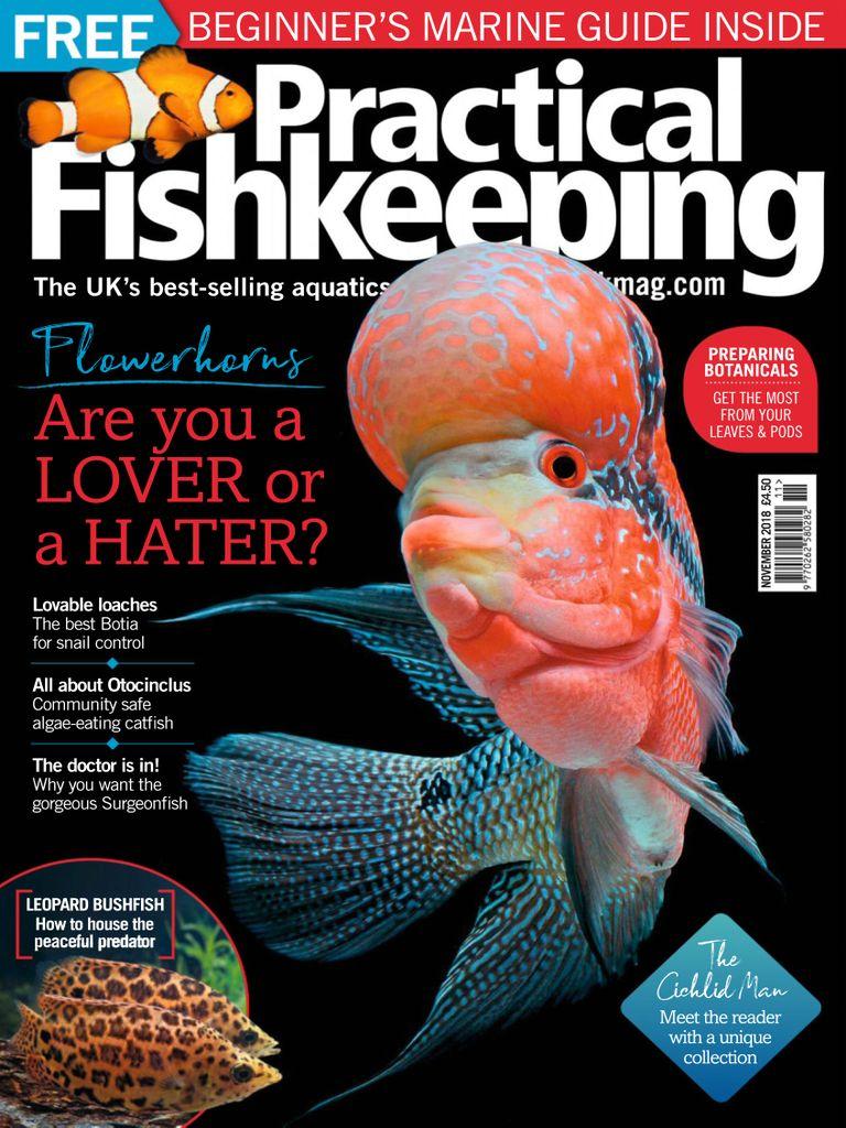 Practical Fishkeeping Digital