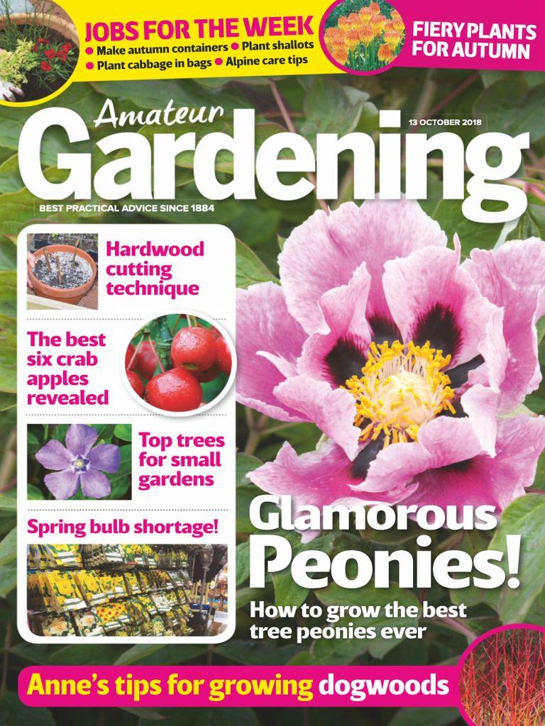 Amateur Gardening Digital