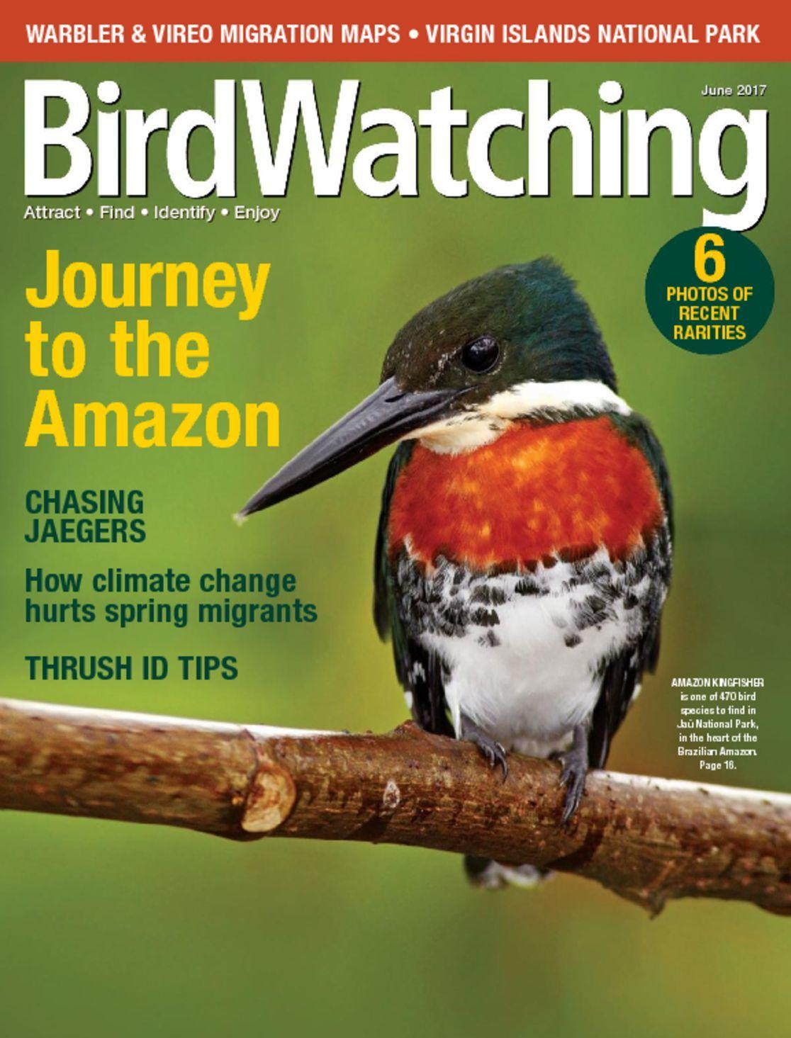 Birdwatching Magazine Subscription