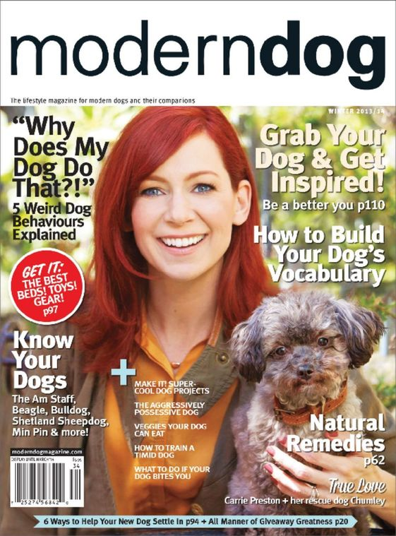 Modern Dog Magazine Subscription