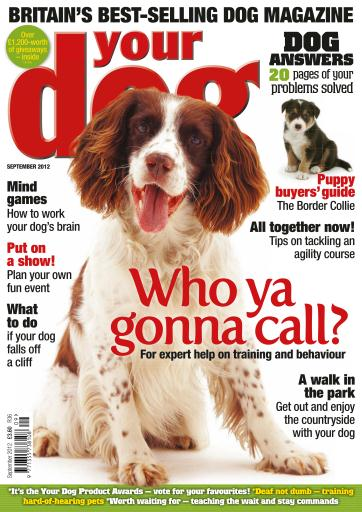 Best Price for Your Dog Magazine Subscription