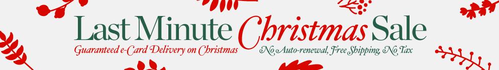 Last Minute Christmas Sale