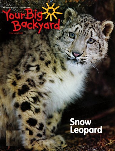 your big backyard magazine